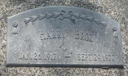 BROZ, HARRY - Saline County, Nebraska | HARRY BROZ - Nebraska Gravestone Photos