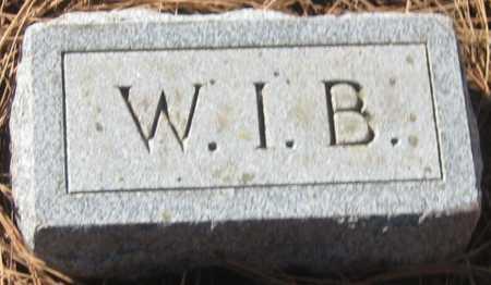 BRUNDAGE, WELLINGTON I. - Saline County, Nebraska   WELLINGTON I. BRUNDAGE - Nebraska Gravestone Photos