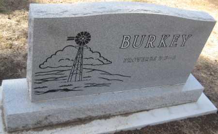 BURKEY, PHYLLIS - Saline County, Nebraska | PHYLLIS BURKEY - Nebraska Gravestone Photos