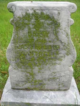 CANTRELL, DAISEY - Saline County, Nebraska   DAISEY CANTRELL - Nebraska Gravestone Photos