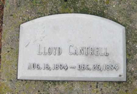 CANTRELL, LLOYD - Saline County, Nebraska   LLOYD CANTRELL - Nebraska Gravestone Photos