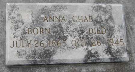 WANEK CHAB, ANNA - Saline County, Nebraska | ANNA WANEK CHAB - Nebraska Gravestone Photos