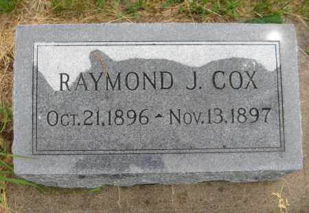 COX, RAYMOND J. - Saline County, Nebraska | RAYMOND J. COX - Nebraska Gravestone Photos