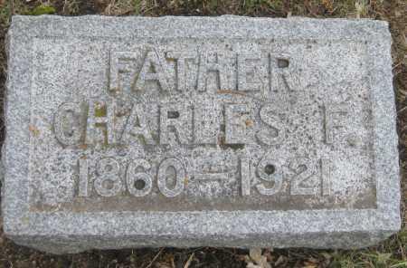 DAMKE, CHARLES F. - Saline County, Nebraska | CHARLES F. DAMKE - Nebraska Gravestone Photos