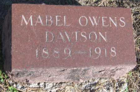 DAVISON, MABEL - Saline County, Nebraska | MABEL DAVISON - Nebraska Gravestone Photos