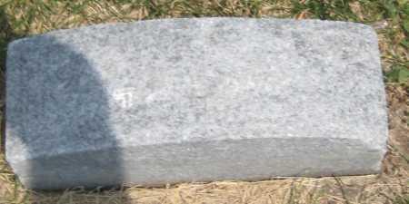 DEGENHARDT, MARY - Saline County, Nebraska   MARY DEGENHARDT - Nebraska Gravestone Photos