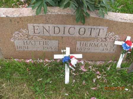 ENDICOTT, HERMAN J. - Saline County, Nebraska | HERMAN J. ENDICOTT - Nebraska Gravestone Photos
