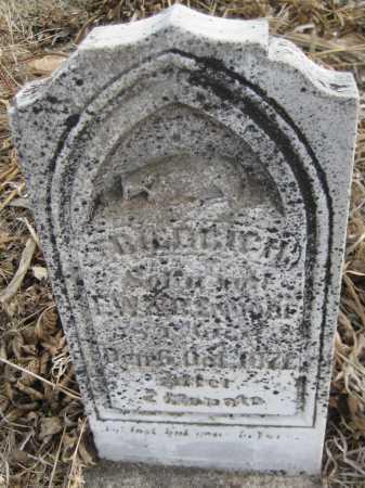 ENDORF, FREDRICH - Saline County, Nebraska | FREDRICH ENDORF - Nebraska Gravestone Photos