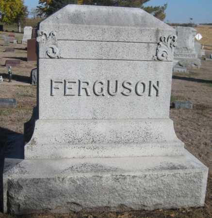 FERGUSON, FAMILY MONUMENT - Saline County, Nebraska | FAMILY MONUMENT FERGUSON - Nebraska Gravestone Photos