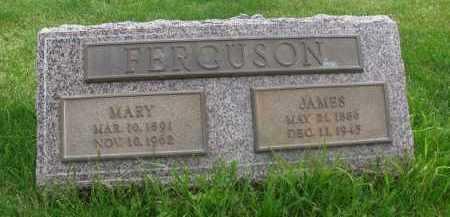 FERGUSON, JAMES - Saline County, Nebraska | JAMES FERGUSON - Nebraska Gravestone Photos