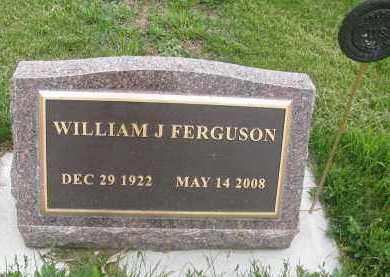 FERGUSON, WILLIAM JAMES - Saline County, Nebraska | WILLIAM JAMES FERGUSON - Nebraska Gravestone Photos