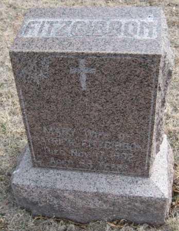 FITZGIBBON, MARY - Saline County, Nebraska | MARY FITZGIBBON - Nebraska Gravestone Photos