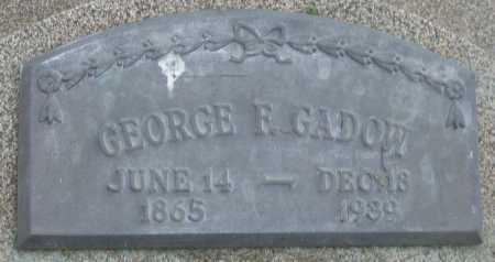 GADOW, GEORGE F. - Saline County, Nebraska   GEORGE F. GADOW - Nebraska Gravestone Photos
