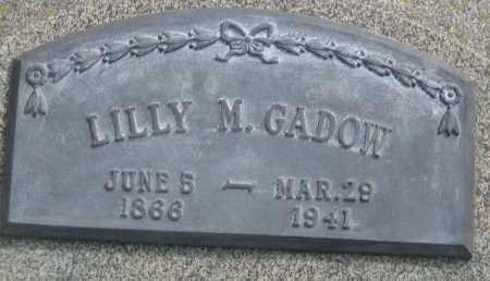 GADOW, LILLY M. - Saline County, Nebraska   LILLY M. GADOW - Nebraska Gravestone Photos