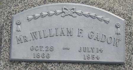 GADOW, WILLIAM F. - Saline County, Nebraska   WILLIAM F. GADOW - Nebraska Gravestone Photos