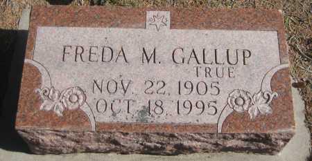 GALLUP, FREDA MATTIE - Saline County, Nebraska   FREDA MATTIE GALLUP - Nebraska Gravestone Photos