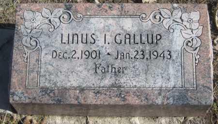 GALLUP, LINUS I. - Saline County, Nebraska | LINUS I. GALLUP - Nebraska Gravestone Photos
