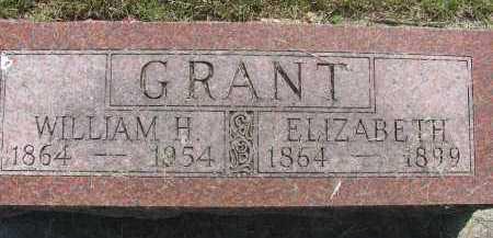 GRANT, ELIZABETH - Saline County, Nebraska | ELIZABETH GRANT - Nebraska Gravestone Photos