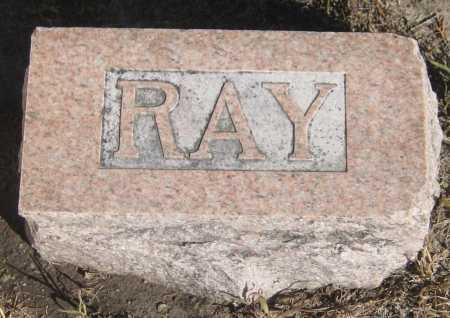 GRAVES, RAY - Saline County, Nebraska | RAY GRAVES - Nebraska Gravestone Photos