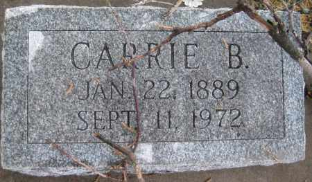 GREER, CARRIE B. - Saline County, Nebraska | CARRIE B. GREER - Nebraska Gravestone Photos