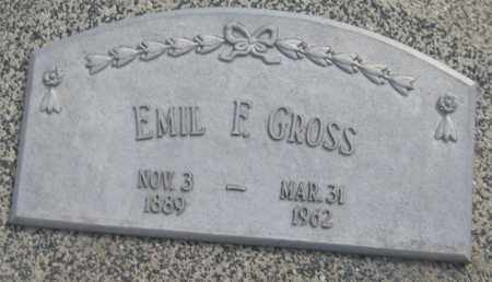 GROSS, EMIL F. - Saline County, Nebraska | EMIL F. GROSS - Nebraska Gravestone Photos