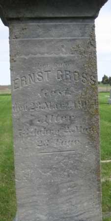 GROSS, ERNST - Saline County, Nebraska | ERNST GROSS - Nebraska Gravestone Photos
