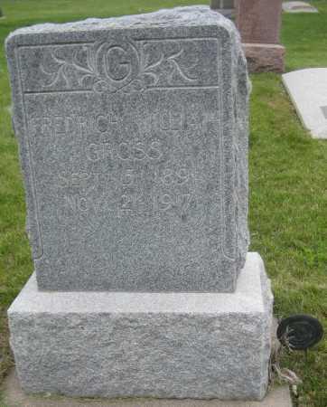 GROSS, FREDRICH WILLIAM - Saline County, Nebraska   FREDRICH WILLIAM GROSS - Nebraska Gravestone Photos