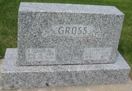 GROSS, LENA M. - Saline County, Nebraska | LENA M. GROSS - Nebraska Gravestone Photos