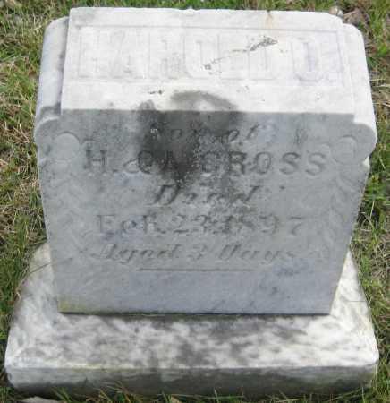 GROSS, HAROLD O. - Saline County, Nebraska   HAROLD O. GROSS - Nebraska Gravestone Photos