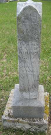 GROSS, HEINRICH C. - Saline County, Nebraska | HEINRICH C. GROSS - Nebraska Gravestone Photos