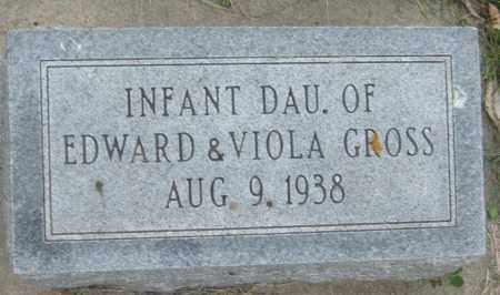 GROSS, INFANT DAUGHTER - Saline County, Nebraska | INFANT DAUGHTER GROSS - Nebraska Gravestone Photos