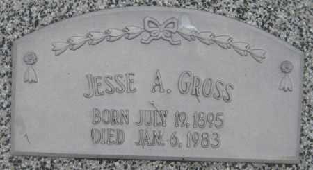 GROSS, JESSE A. - Saline County, Nebraska | JESSE A. GROSS - Nebraska Gravestone Photos