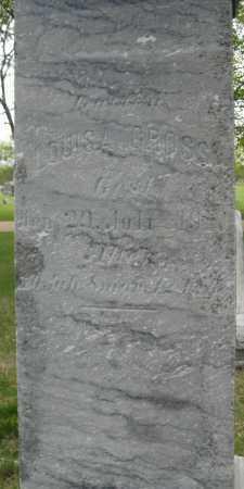 GROSS, LOUISA - Saline County, Nebraska | LOUISA GROSS - Nebraska Gravestone Photos