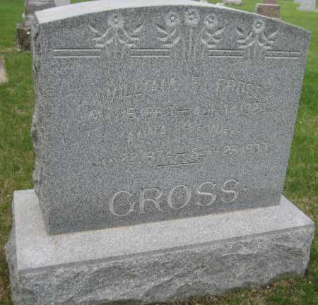 GROSS, ANNA - Saline County, Nebraska | ANNA GROSS - Nebraska Gravestone Photos