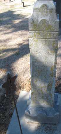 GUNN, ANN E. - Saline County, Nebraska | ANN E. GUNN - Nebraska Gravestone Photos