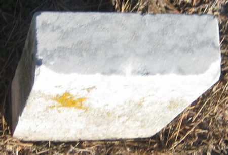 GUNN, ALONZO W. - Saline County, Nebraska | ALONZO W. GUNN - Nebraska Gravestone Photos