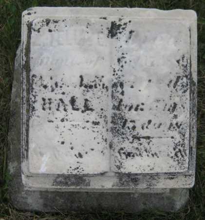 HALL, ESTELLA E. - Saline County, Nebraska   ESTELLA E. HALL - Nebraska Gravestone Photos