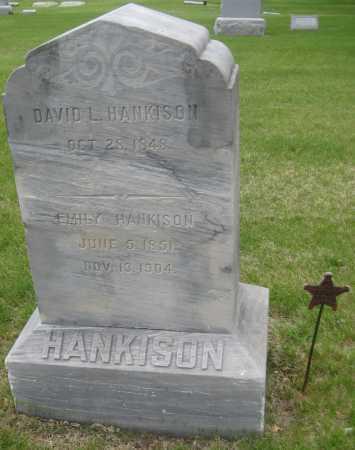 HANKISON, DAVID L. - Saline County, Nebraska | DAVID L. HANKISON - Nebraska Gravestone Photos