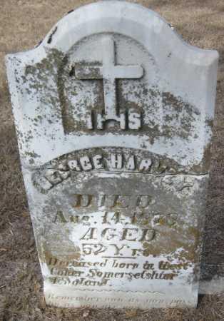 HARVEY, GEORGE - Saline County, Nebraska | GEORGE HARVEY - Nebraska Gravestone Photos