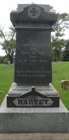 HARVEY, JAMES - Saline County, Nebraska | JAMES HARVEY - Nebraska Gravestone Photos