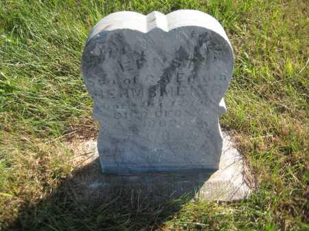 HERMSMEIER, ERNST - Saline County, Nebraska | ERNST HERMSMEIER - Nebraska Gravestone Photos