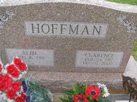 LADMAN HOFFMAN, ALBIE - Saline County, Nebraska | ALBIE LADMAN HOFFMAN - Nebraska Gravestone Photos