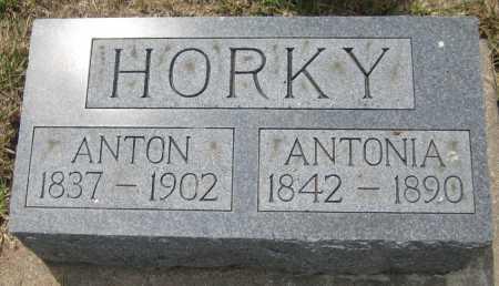 HORKY, ANTON - Saline County, Nebraska   ANTON HORKY - Nebraska Gravestone Photos
