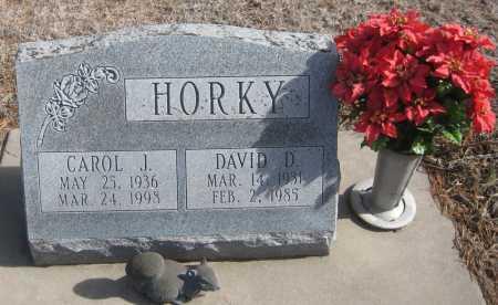 HORKY, DAVID D. - Saline County, Nebraska | DAVID D. HORKY - Nebraska Gravestone Photos