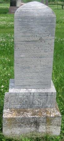 FRIMEL JOHNSON, ANTONIE - Saline County, Nebraska | ANTONIE FRIMEL JOHNSON - Nebraska Gravestone Photos