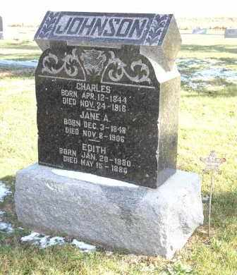 JOHNSON, EDITH - Saline County, Nebraska | EDITH JOHNSON - Nebraska Gravestone Photos