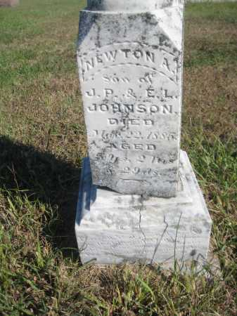 JOHNSON, NEWTON A. - Saline County, Nebraska | NEWTON A. JOHNSON - Nebraska Gravestone Photos
