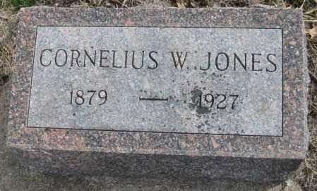 JONES, CORNELIUS W. - Saline County, Nebraska | CORNELIUS W. JONES - Nebraska Gravestone Photos