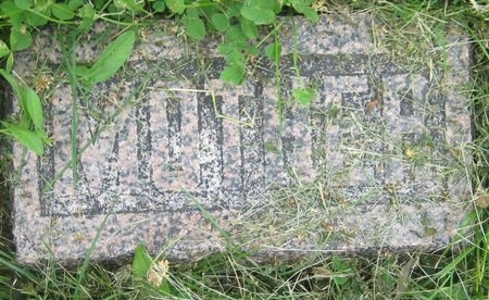 JONES, ELMINA - Saline County, Nebraska | ELMINA JONES - Nebraska Gravestone Photos