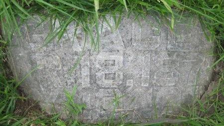 JONES, GRACE - Saline County, Nebraska   GRACE JONES - Nebraska Gravestone Photos